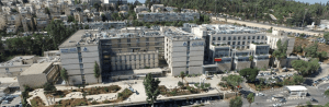 Shaare Zedek Medical Center-image-8