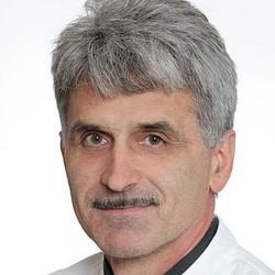 профессор эрнст шпет швальбе