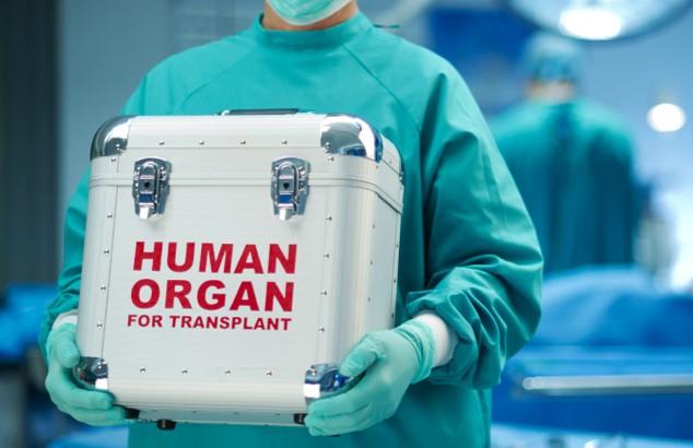 Пересадка органов в Индии – чего ожидать иностранному пациенту?