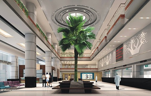 42 VIP палаты, трансфер, переводчик, интернет и комфортные номера для пациентов в онкоцентре Фуда