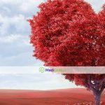 Советы докторов для обследования сердца