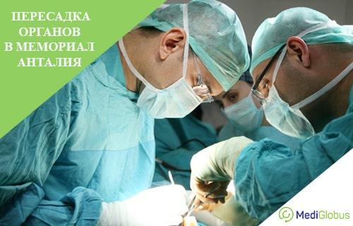 пересадка органов в клинике мемориал анталия