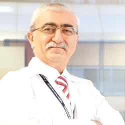 Профессор Бингюр Сёнмез