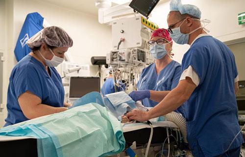 Дыхательные аппараты для новорожденных в Брно