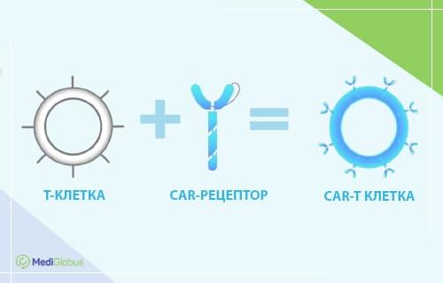 лечение рака головного мозга с помощью car-t терапии